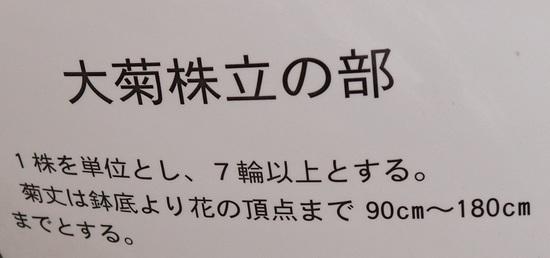 IMG_0846 (2).jpg