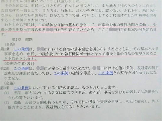 P1100147 (3)_LI.jpg