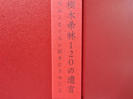 P1140278 (2).jpg